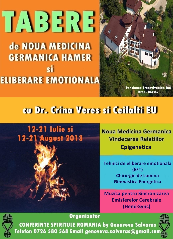 FINAL Afis Crina Veres NMG iulie-august 2013