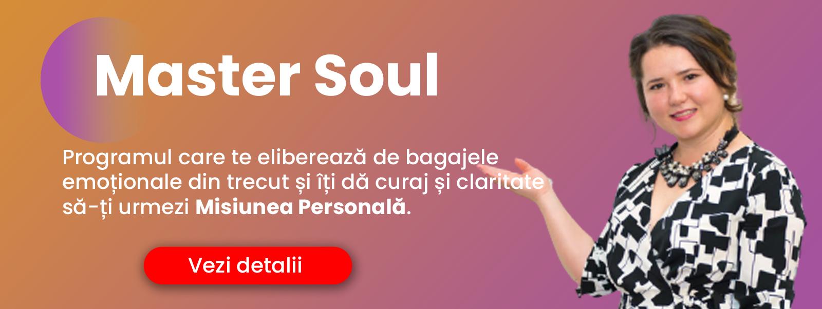 Banner Master Soul EI